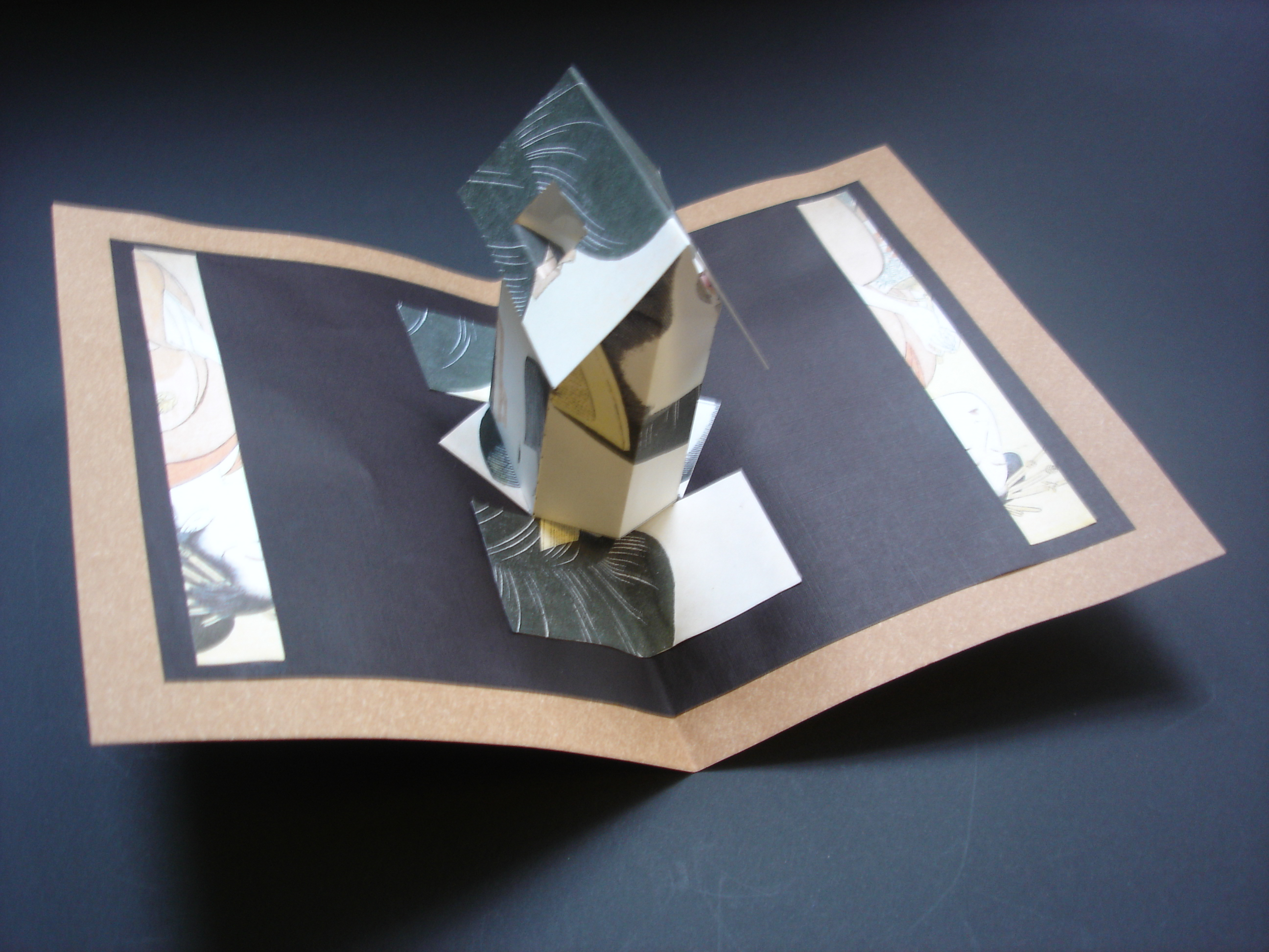 the book art project pioneering work in developing literacy